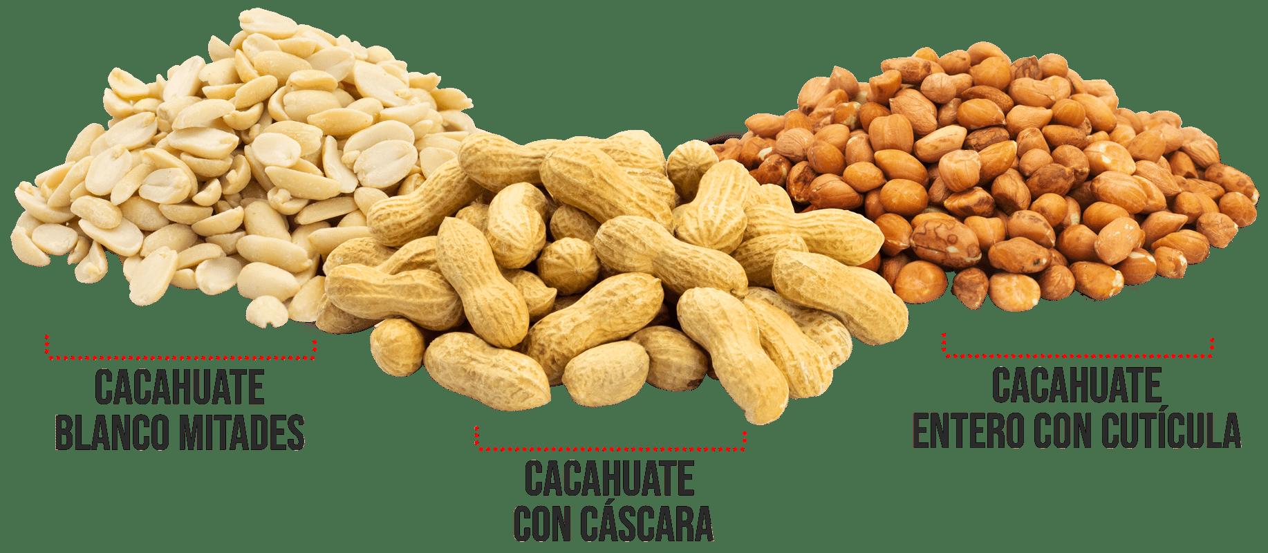 cacahuates_variedad-min (1)